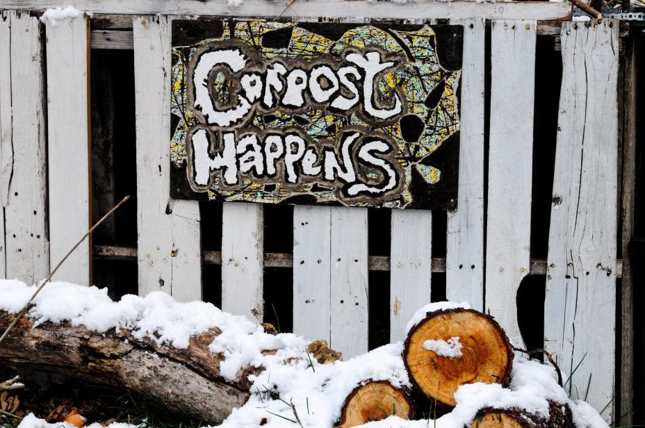 Top Compost Bins You Need At Home